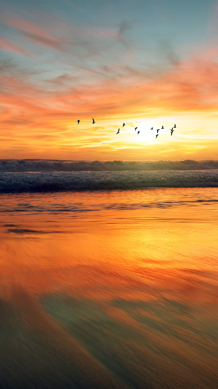 Papers.co-iPhone5-iphone6-plus-wallpaper-nm04-sunset-sea-nature-orange-summer-sky-bird-animal