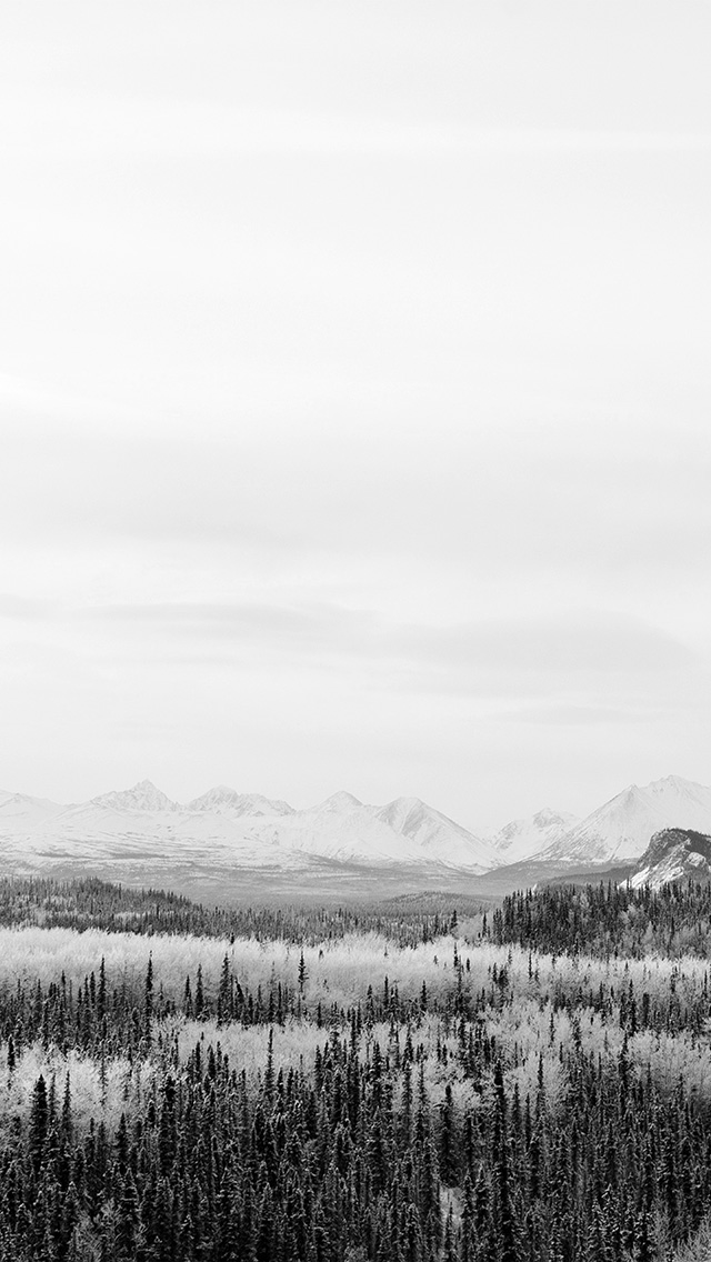 freeios8.com-iphone-4-5-6-plus-ipad-ios8-nm17-winter-mountain-wood-nature-snow-bw