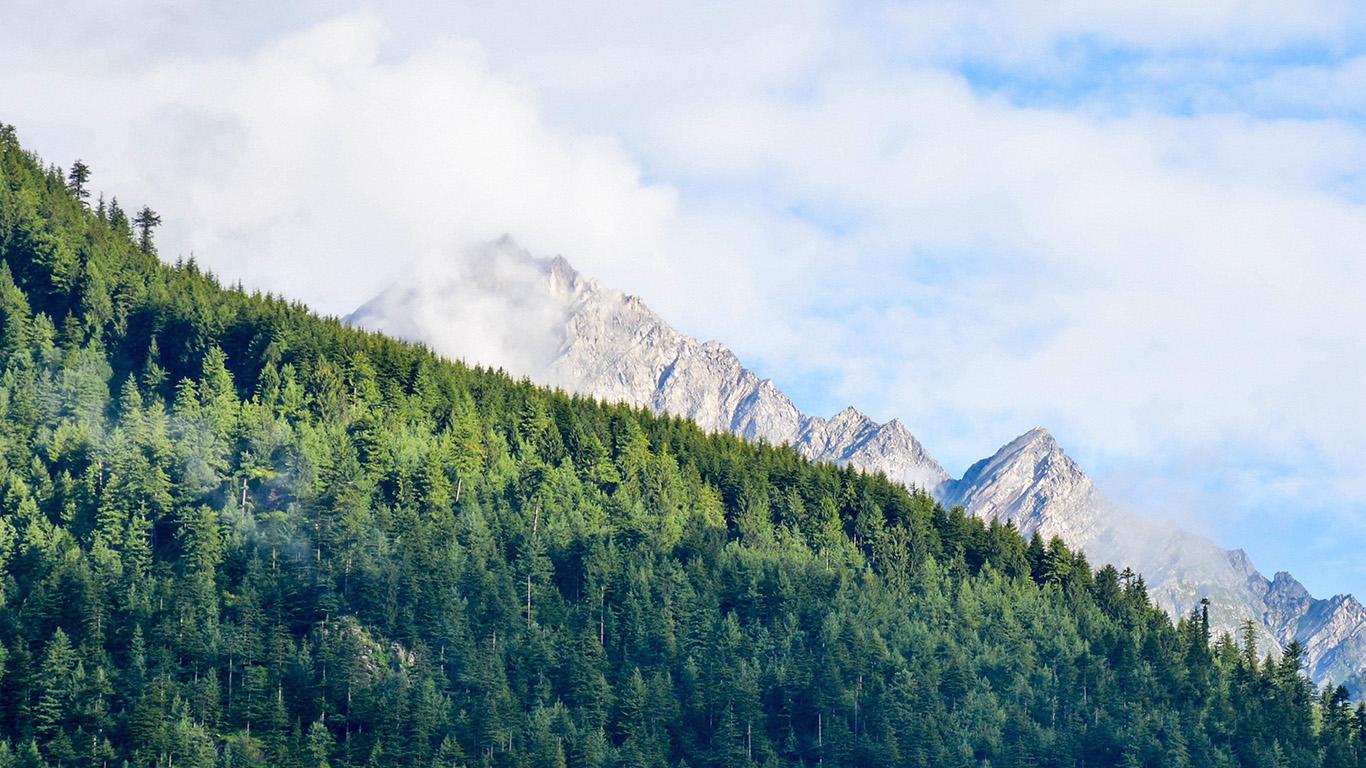 desktop-wallpaper-laptop-mac-macbook-air-nm28-wood-nature-mountain-blue-green-summer-wallpaper