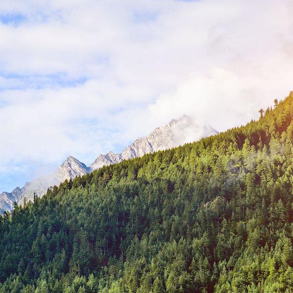 iPapers.co-Apple-iPhone-iPad-Macbook-iMac-wallpaper-nm29-wood-nature-mountain-blue-green-summer-flare-wallpaper