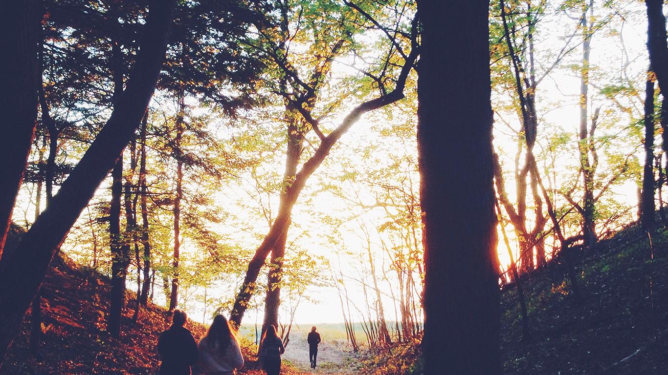desktop-wallpaper-laptop-mac-macbook-air-nm45-hiking-mountain-wood-sunset-nature-wallpaper