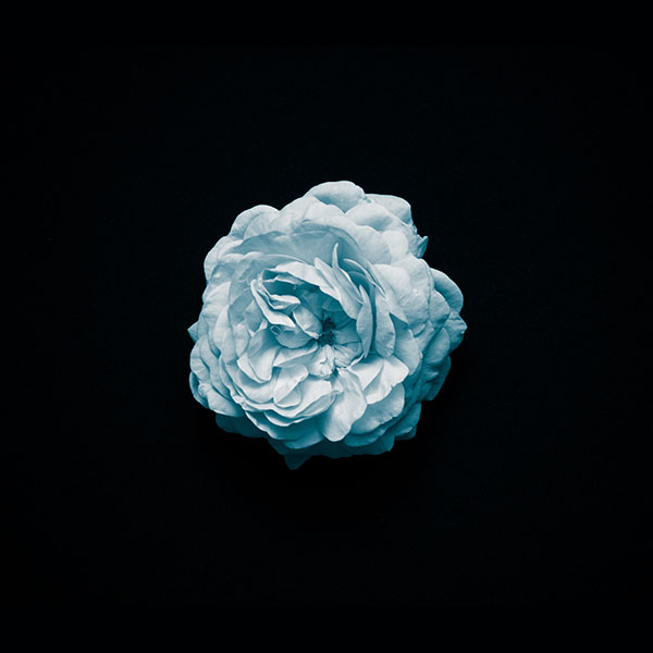 iPapers.co-Apple-iPhone-iPad-Macbook-iMac-wallpaper-nm84-flower-center-blue-minimal-simple-wallpaper