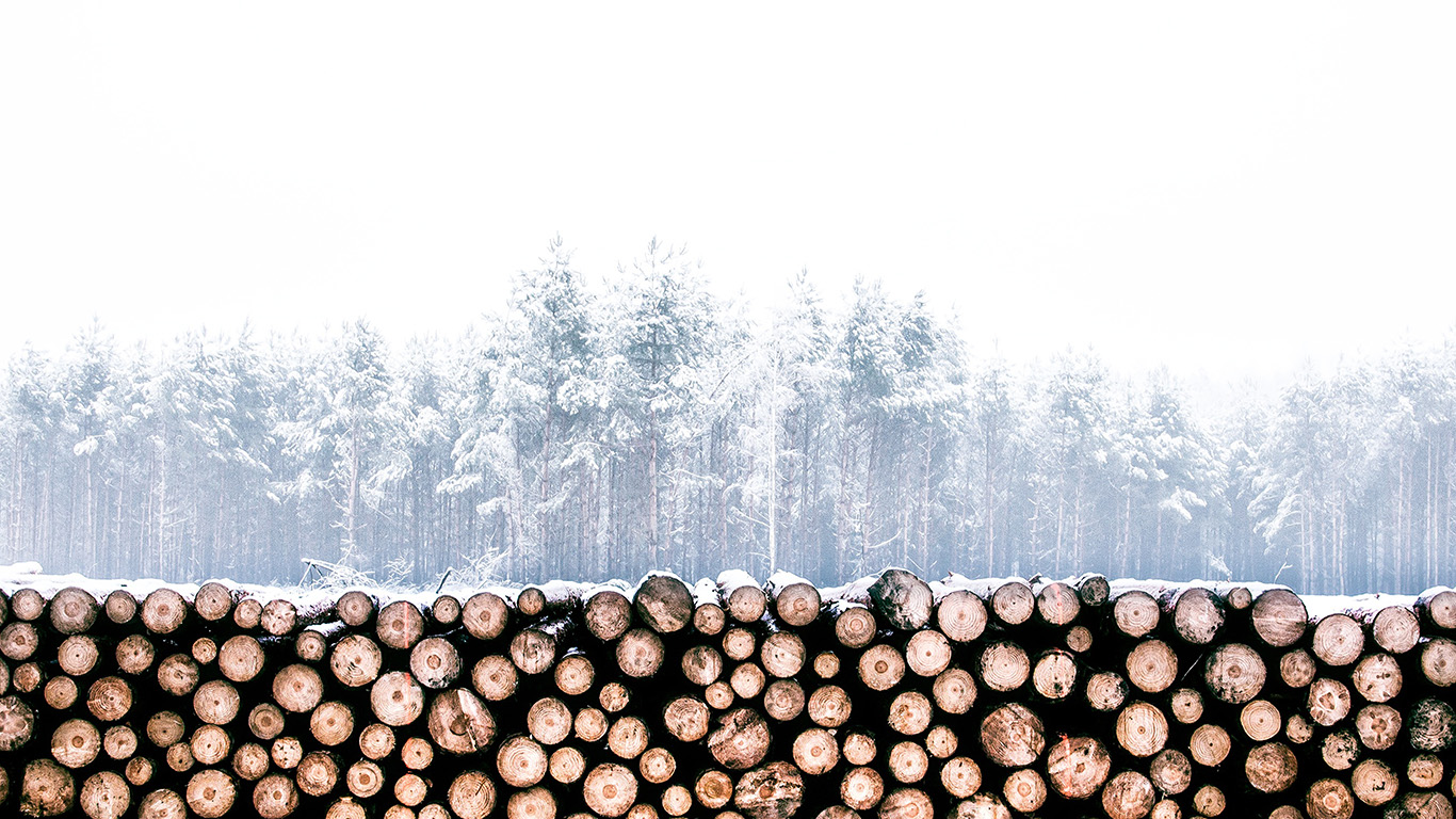 desktop-wallpaper-laptop-mac-macbook-air-nm96-winter-snow-wood-forest-nature-wallpaper