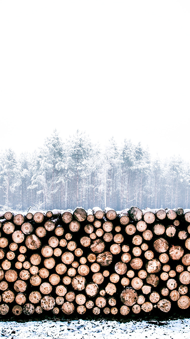 iPhone6papers.co-Apple-iPhone-6-iphone6-plus-wallpaper-nm96-winter-snow-wood-forest-nature