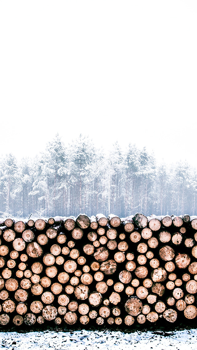 freeios8.com-iphone-4-5-6-plus-ipad-ios8-nm96-winter-snow-wood-forest-nature