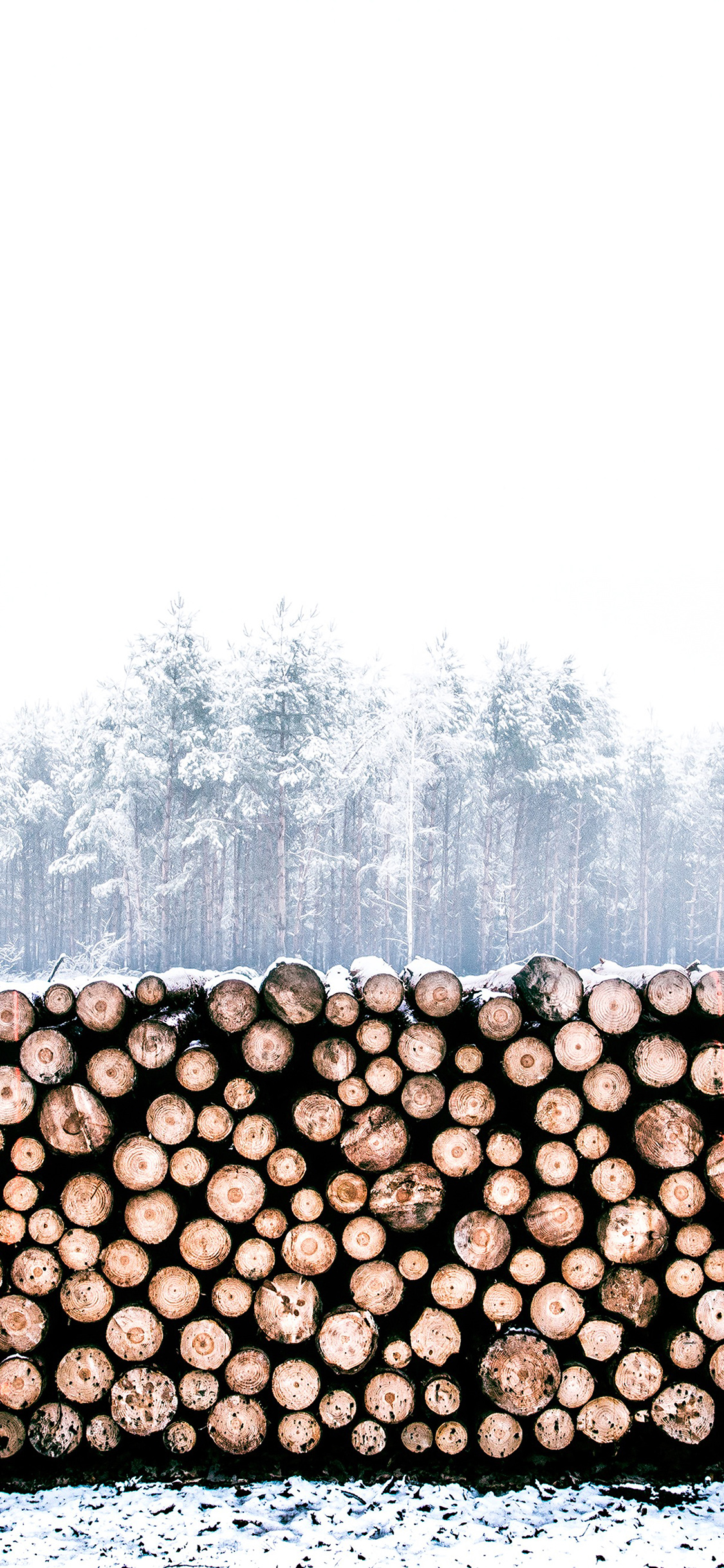 iPhoneXpapers.com-Apple-iPhone-wallpaper-nm96-winter-snow-wood-forest-nature
