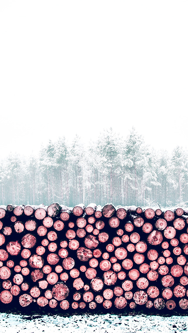 freeios8.com-iphone-4-5-6-plus-ipad-ios8-nm97-winter-snow-wood-forest-nature-red