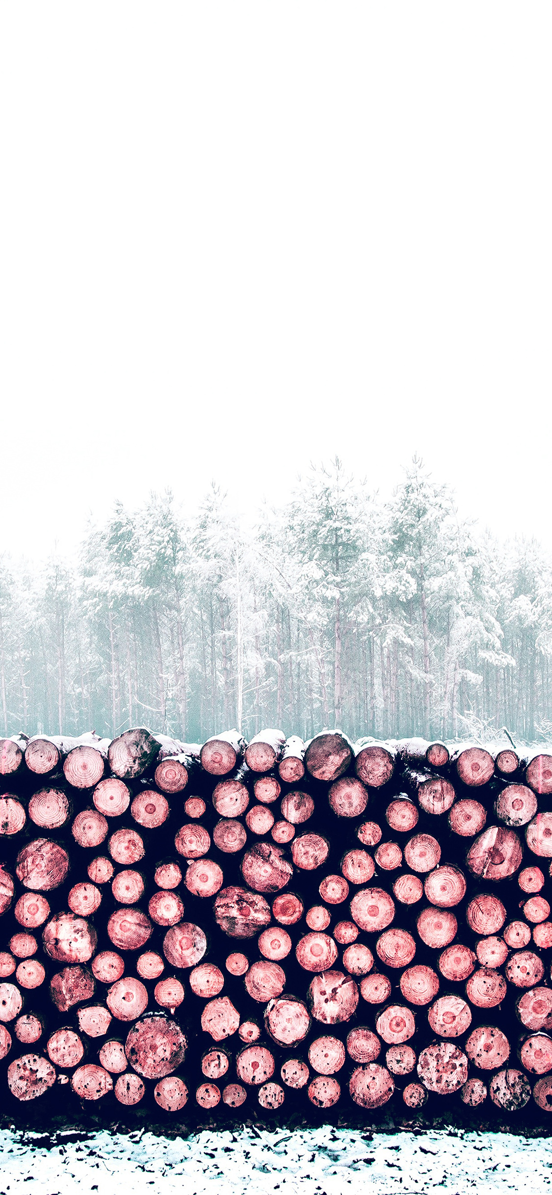 iPhonexpapers.com-Apple-iPhone-wallpaper-nm97-winter-snow-wood-forest-nature-red