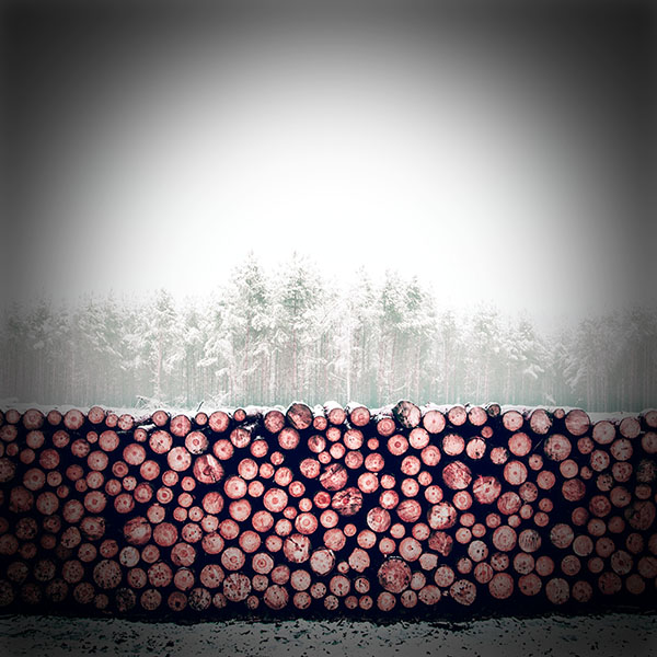 iPapers.co-Apple-iPhone-iPad-Macbook-iMac-wallpaper-nm98-winter-snow-wood-forest-nature-redvignette-wallpaper