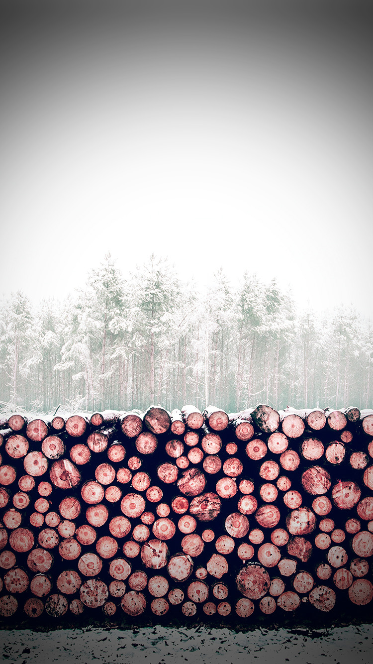 iPhone7papers.com-Apple-iPhone7-iphone7plus-wallpaper-nm98-winter-snow-wood-forest-nature-redvignette