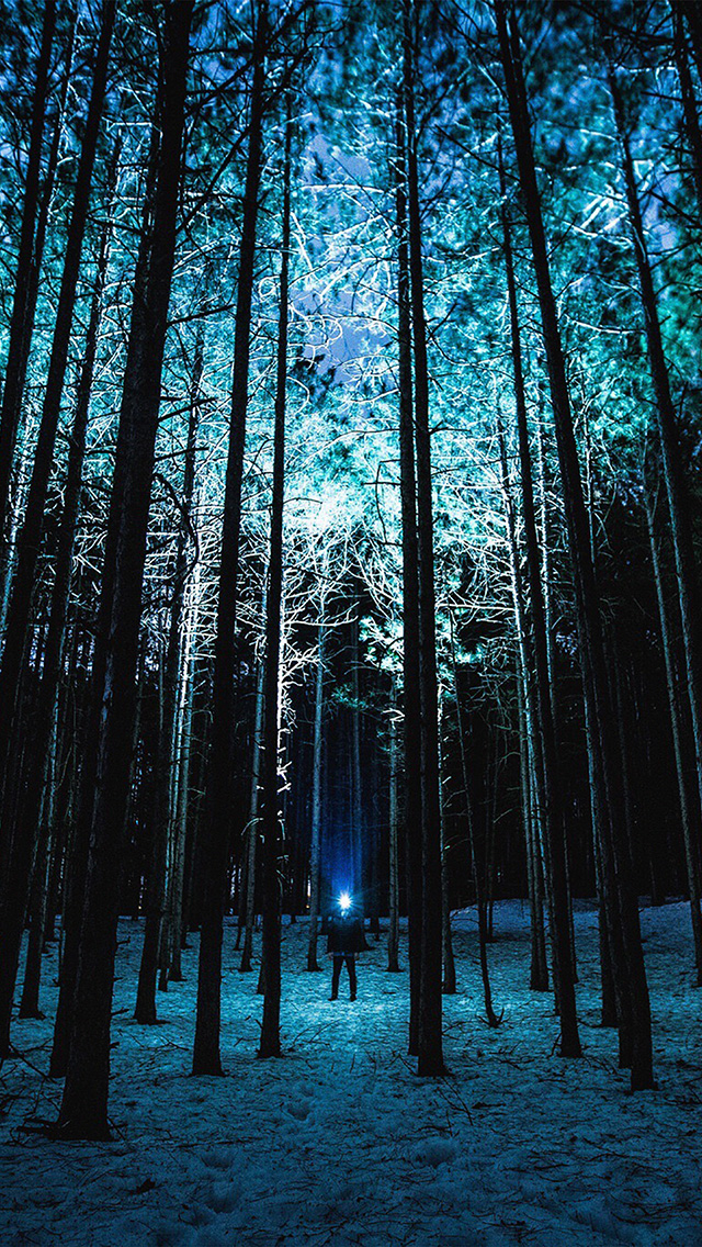 freeios8.com-iphone-4-5-6-plus-ipad-ios8-nn88-wood-mountain-nature-blue-night