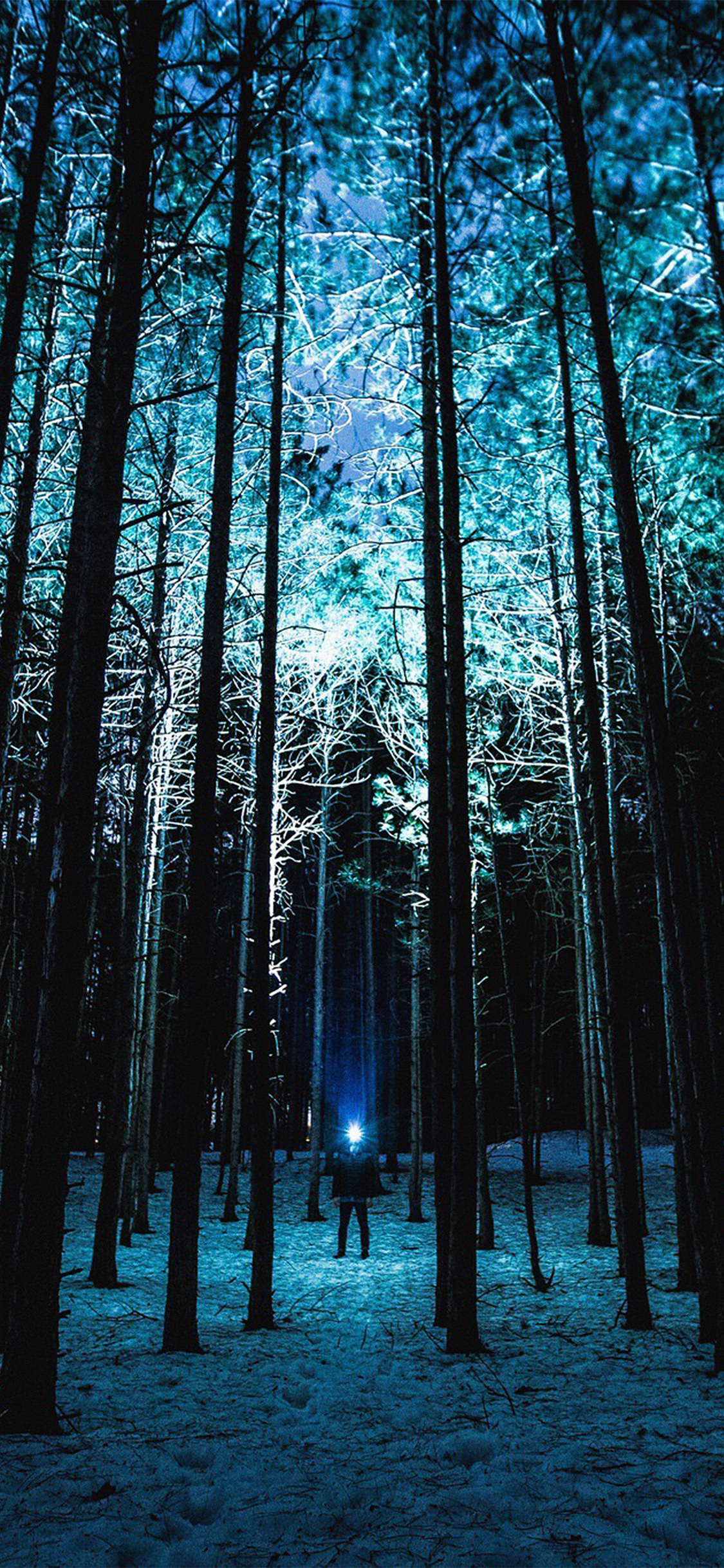 iPhoneXpapers.com-Apple-iPhone-wallpaper-nn88-wood-mountain-nature-blue-night