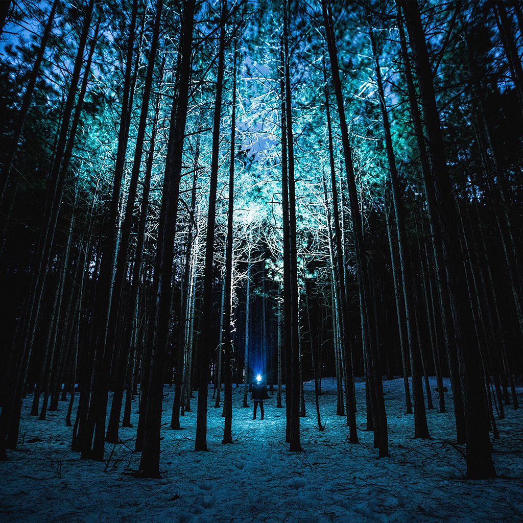 android-wallpaper-nn88-wood-mountain-nature-blue-night-wallpaper