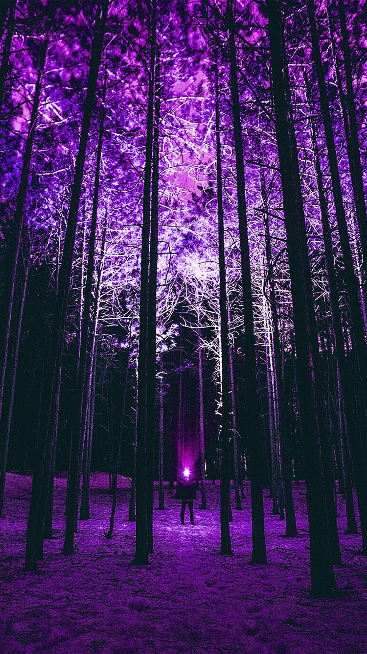 iPhone7papers.com-Apple-iPhone7-iphone7plus-wallpaper-nn90-wood-mountain-nature-purple-night