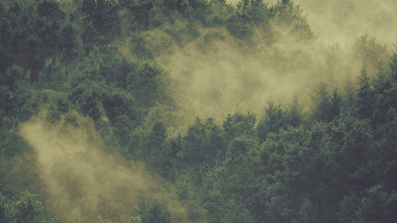 desktop-wallpaper-laptop-mac-macbook-air-no22-forest-wood-fog-nature-green-mountain-wallpaper