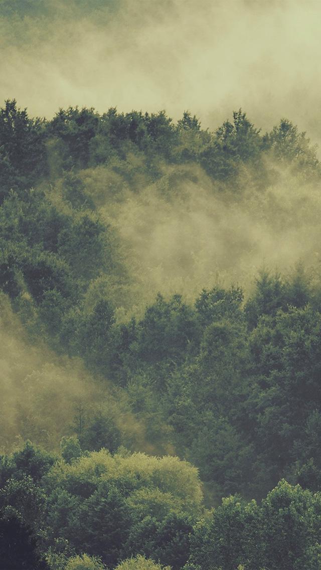 freeios8.com-iphone-4-5-6-plus-ipad-ios8-no22-forest-wood-fog-nature-green-mountain