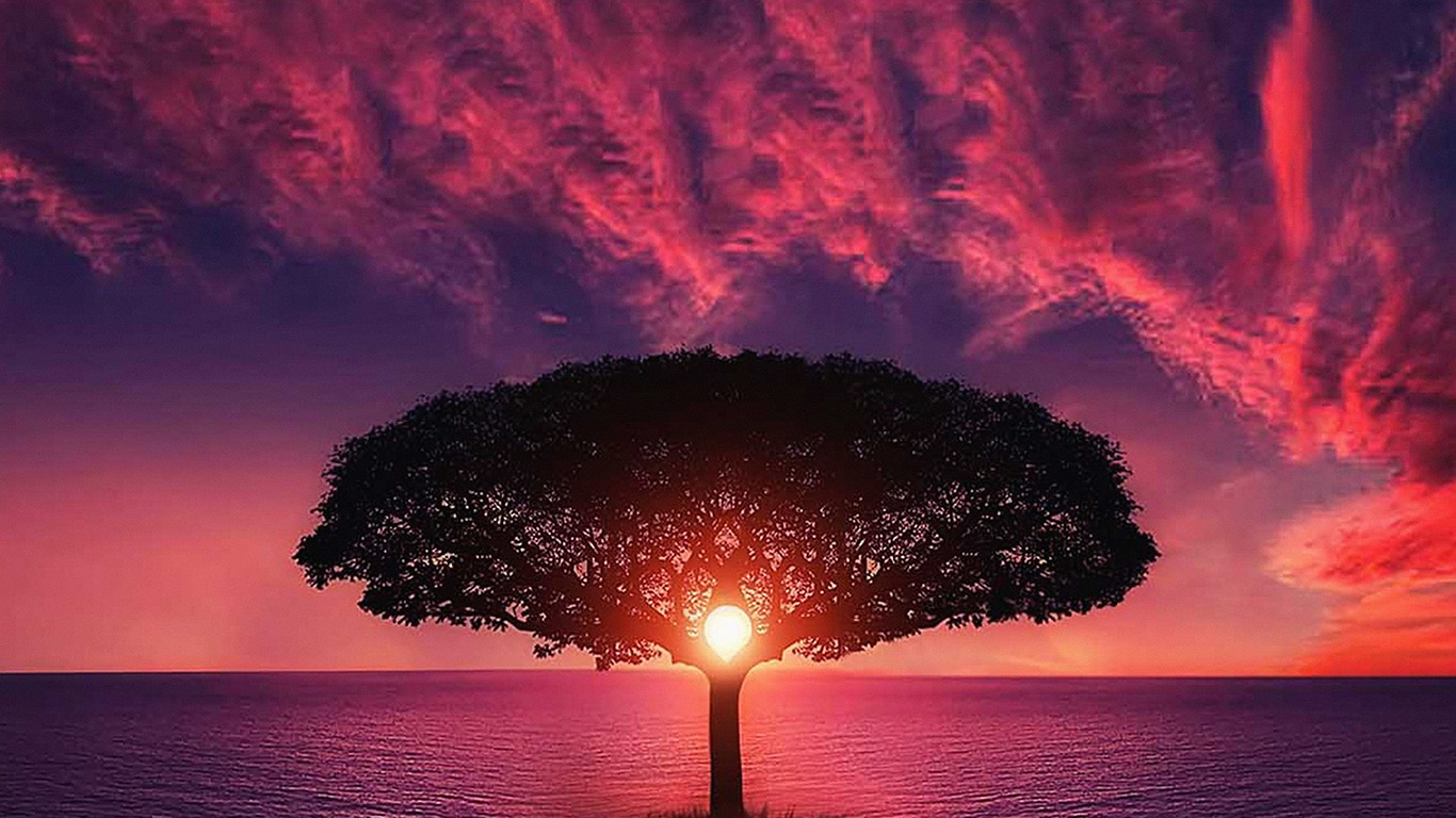 desktop-wallpaper-laptop-mac-macbook-air-no28-sea-tree-purple-sky-nature-wallpaper