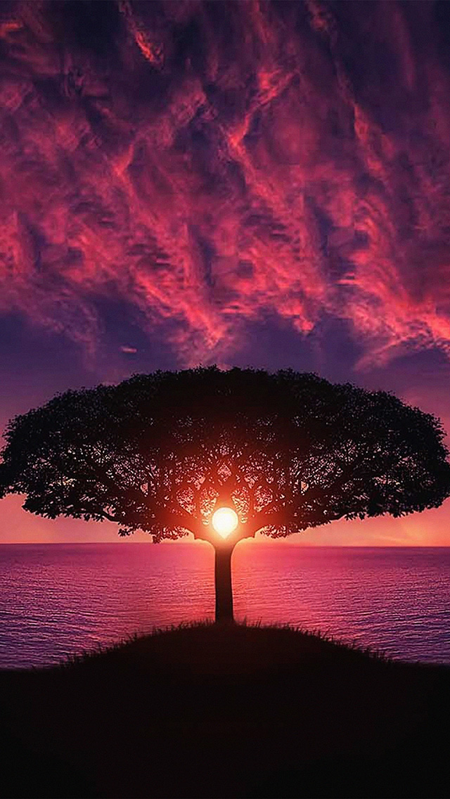 freeios8.com-iphone-4-5-6-plus-ipad-ios8-no28-sea-tree-purple-sky-nature