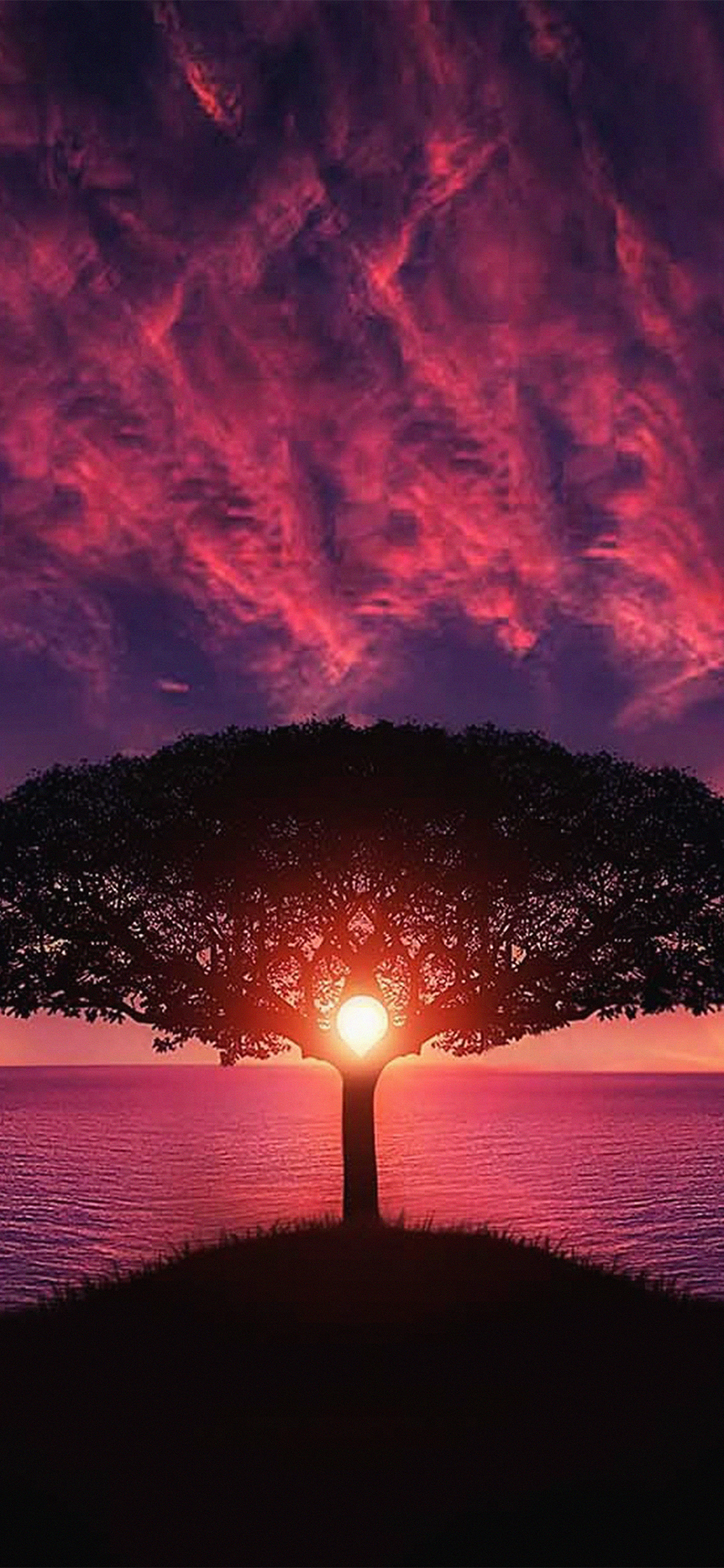iPhoneXpapers.com-Apple-iPhone-wallpaper-no28-sea-tree-purple-sky-nature