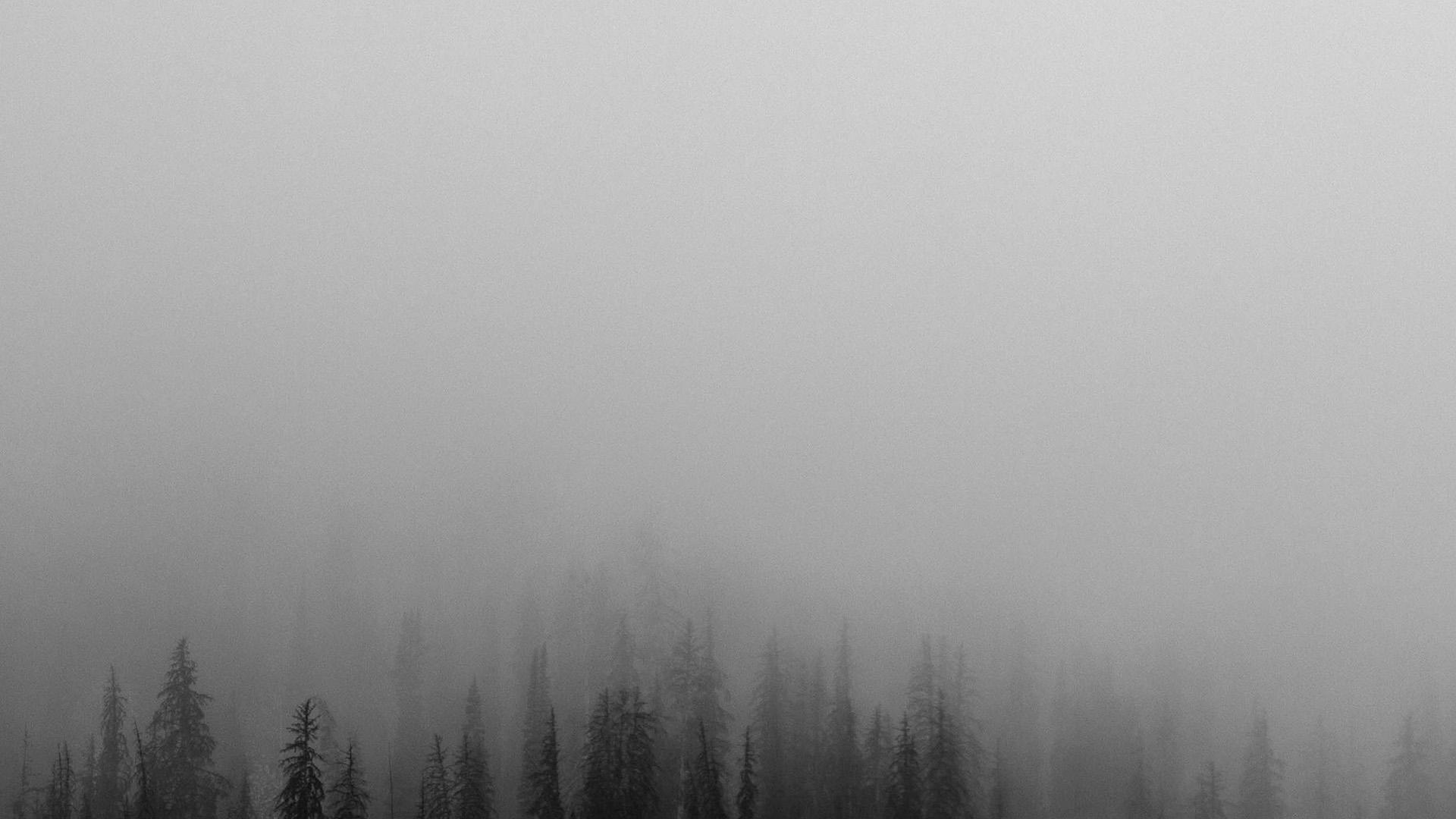 no61-fog-minimal-mountain-wood-nature-wallpaper