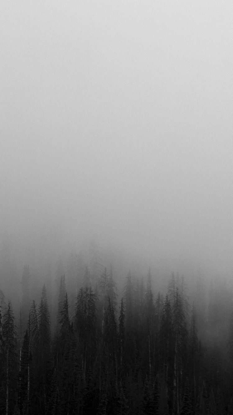 iPhone7papers.com-Apple-iPhone7-iphone7plus-wallpaper-no61-fog-minimal-mountain-wood-nature