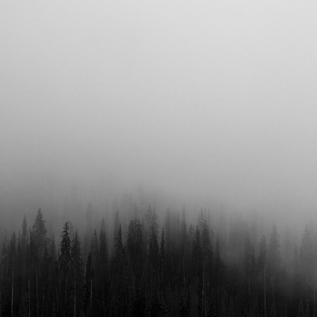 android-wallpaper-no61-fog-minimal-mountain-wood-nature-wallpaper
