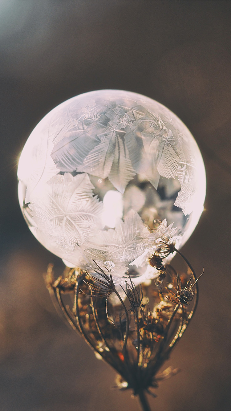 iPhone6papers.co-Apple-iPhone-6-iphone6-plus-wallpaper-no85-winter-cold-frozen-bubble-bokeh-nature