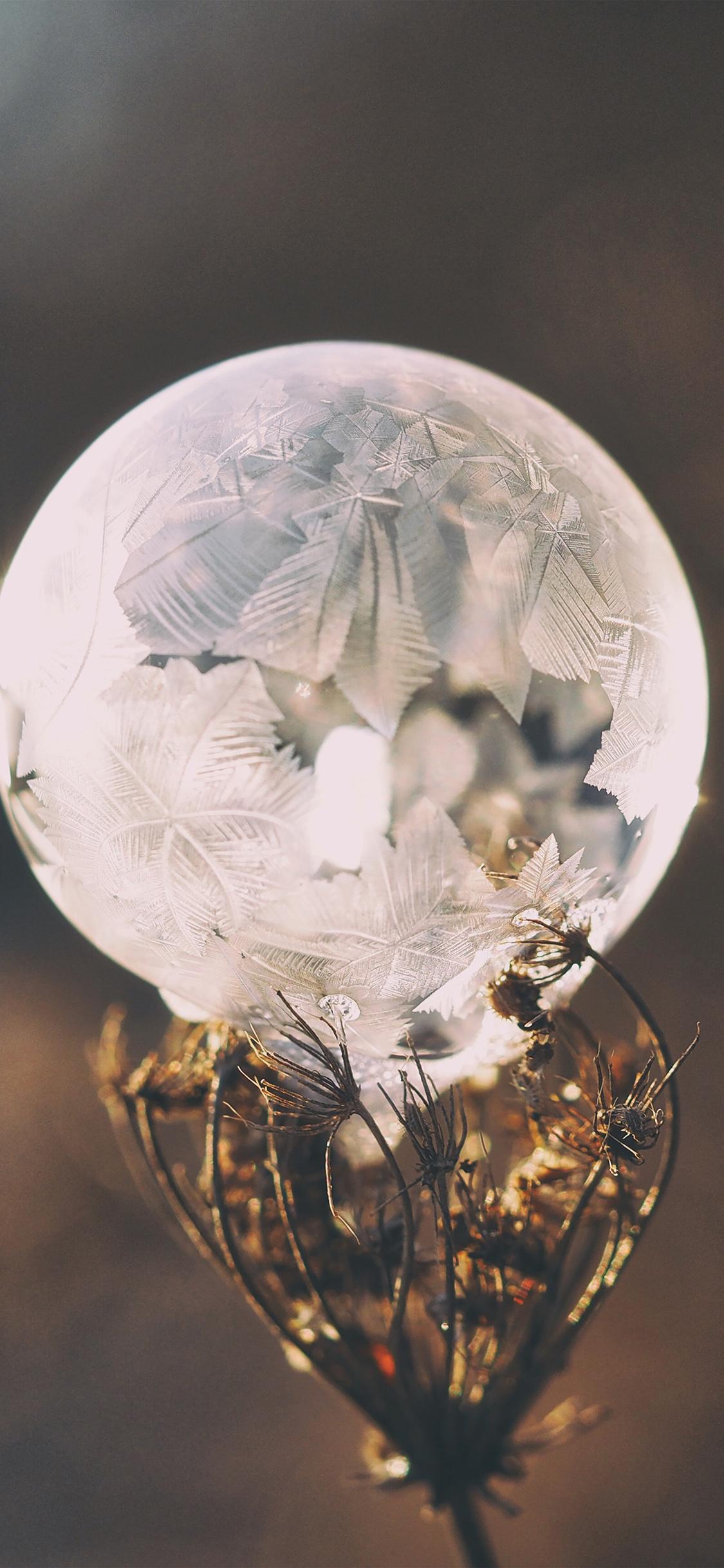 iPhoneXpapers.com-Apple-iPhone-wallpaper-no85-winter-cold-frozen-bubble-bokeh-nature