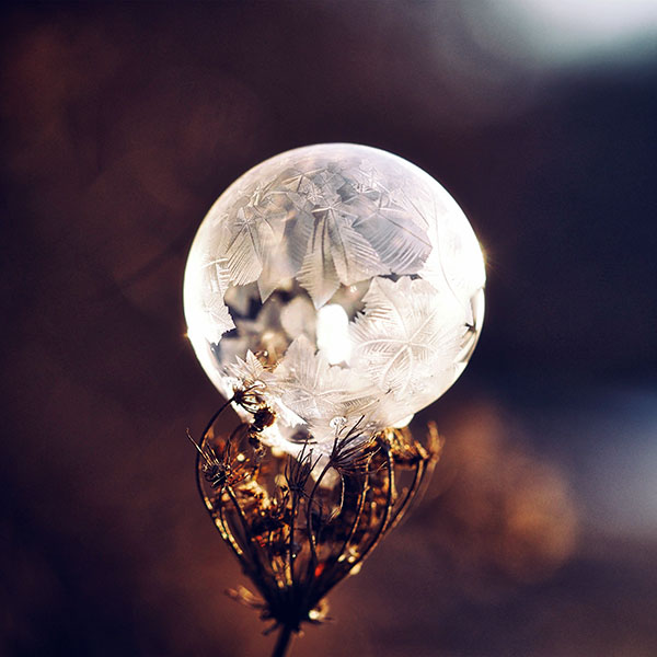 iPapers.co-Apple-iPhone-iPad-Macbook-iMac-wallpaper-no86-winter-cold-frozen-bubble-bokeh-nature-dark-wallpaper