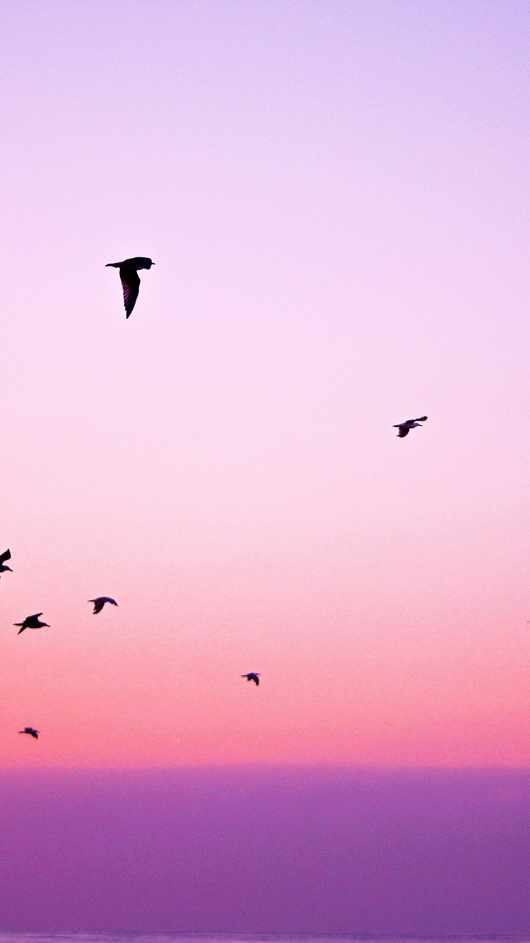 iPhone7papers.com-Apple-iPhone7-iphone7plus-wallpaper-np83-sky-bird-pink-red-sunset-nature