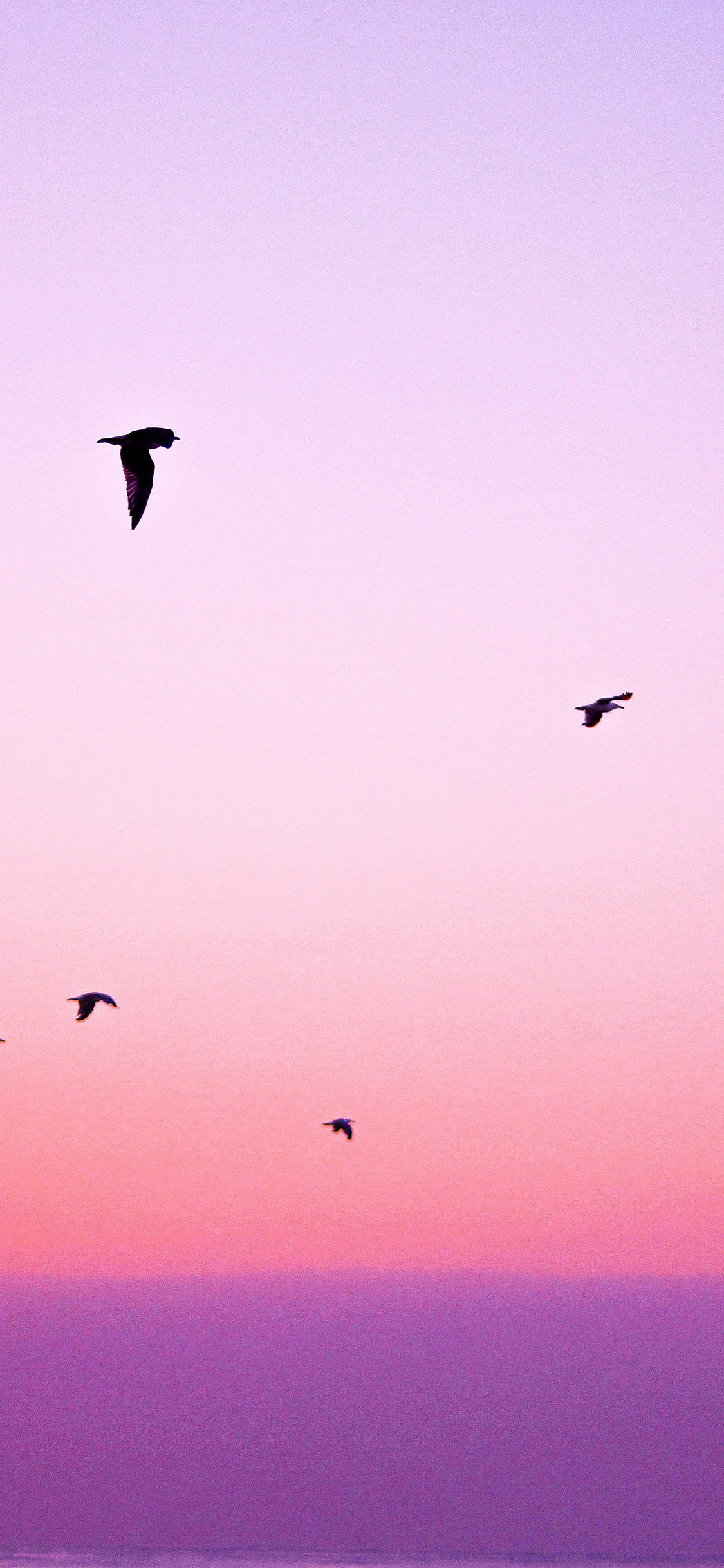 iPhoneXpapers.com-Apple-iPhone-wallpaper-np83-sky-bird-pink-red-sunset-nature