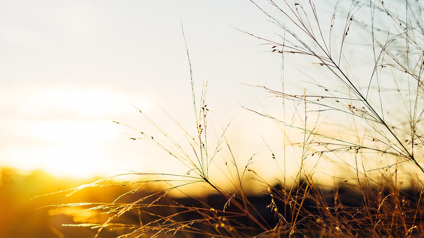 desktop-wallpaper-laptop-mac-macbook-air-nq73-sunset-field-sky-nature-wallpaper