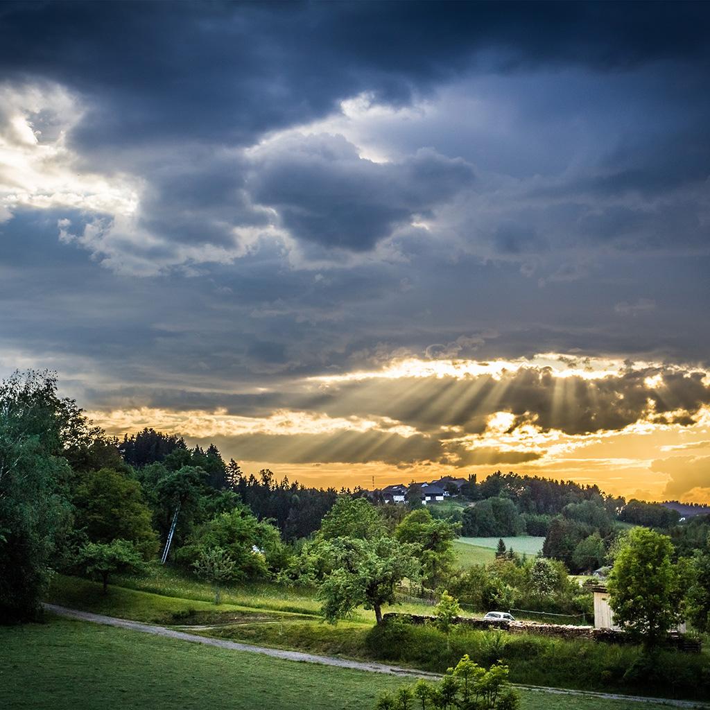 Nature: Nq98-forest-sunset-summer-mountain-nature-wallpaper