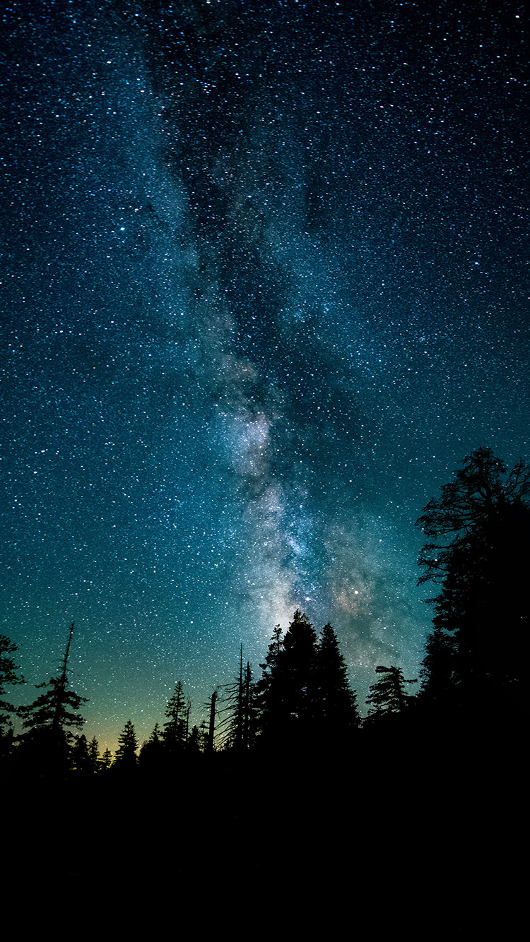 Iphonepapers Com Apple Iphone8 Wallpaper Ns70 Night Sky