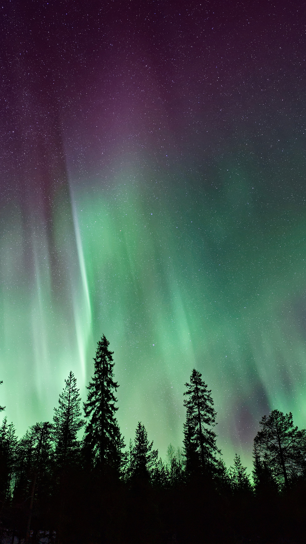 Night Sky, Aurora Borealis, Northern Lights Effect ...  Night Sky Aurora Colorado