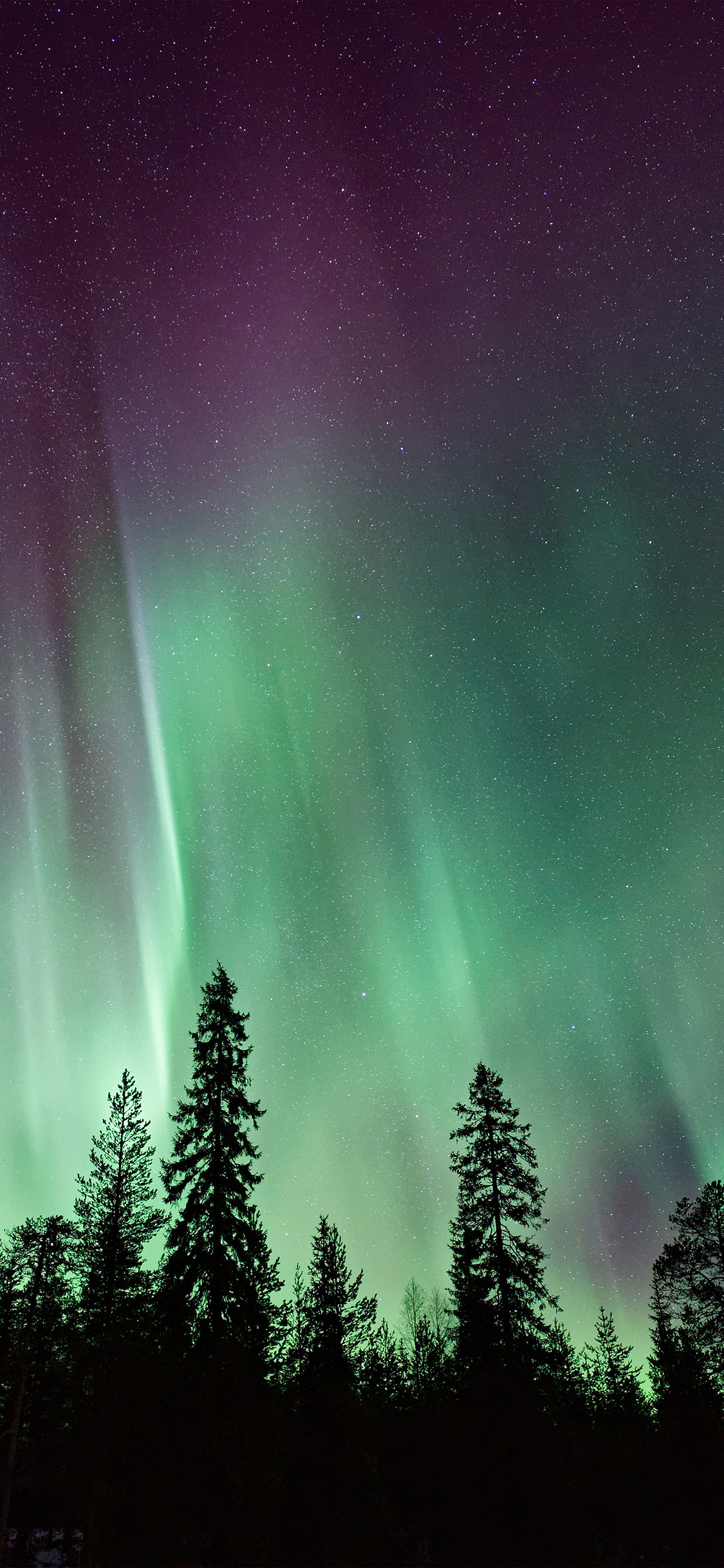 iPhoneXpapers.com-Apple-iPhone-wallpaper-ns86-aurora-night-sky-nature