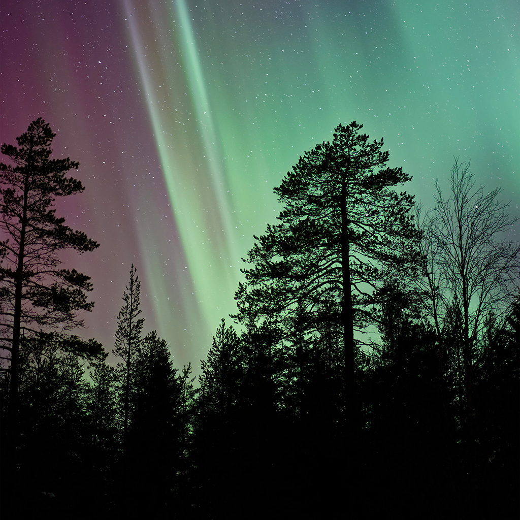 wallpaper-nt02-aurora-night-sky-nature-wallpaper