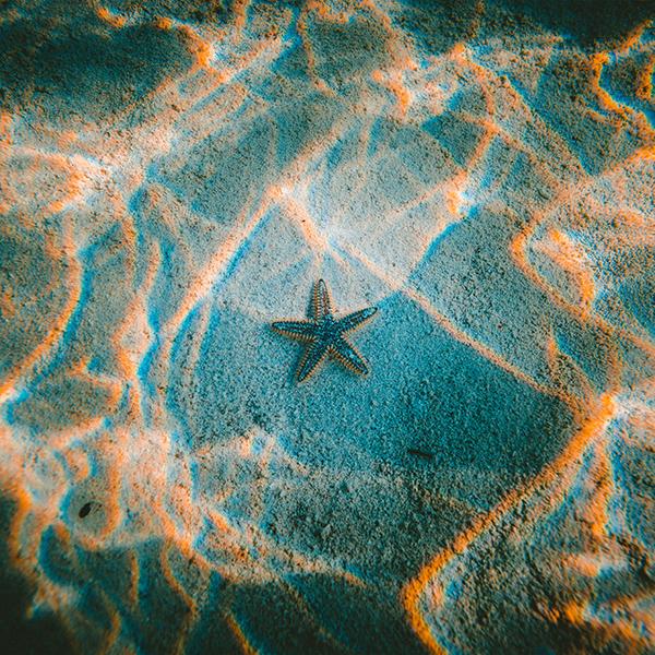 iPapers.co-Apple-iPhone-iPad-Macbook-iMac-wallpaper-nu23-starfish-sea-beach-nature-wallpaper