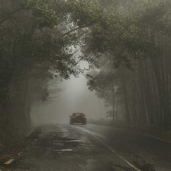 iPapers.co-Apple-iPhone-iPad-Macbook-iMac-wallpaper-nu49-forest-street-wood-dark-nature-car-wallpaper