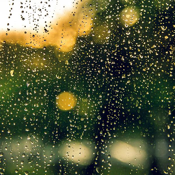 iPapers.co-Apple-iPhone-iPad-Macbook-iMac-wallpaper-nv02-rain-window-green-nature-wallpaper