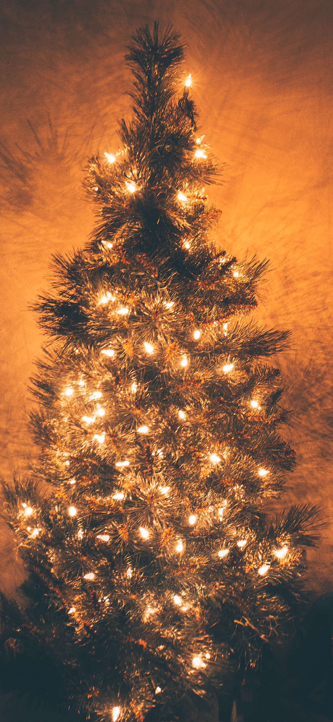 iPhonexpapers.com-Apple-iPhone-wallpaper-nv79-christmas-tree-light-holiday-tree-nature