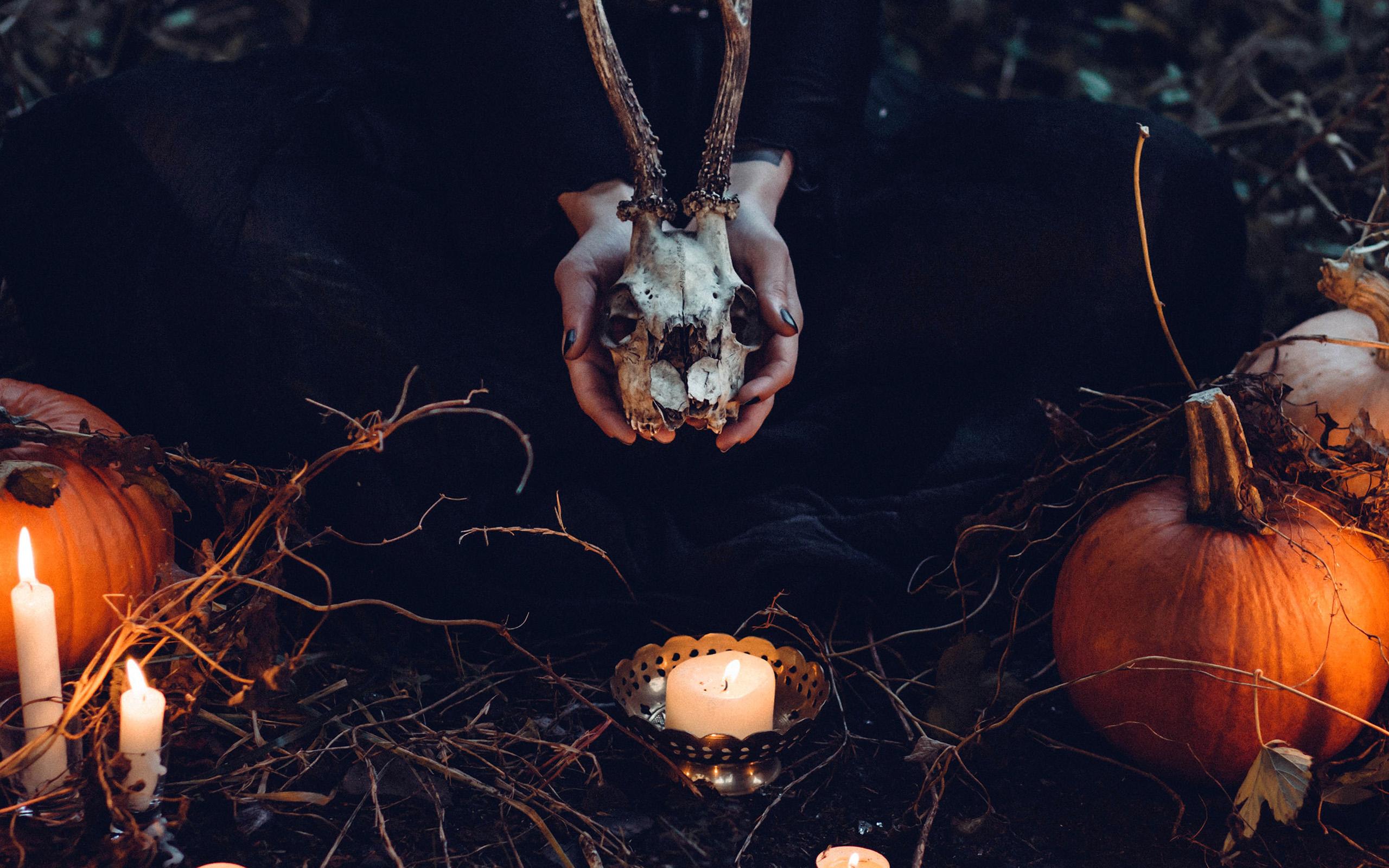 wallpaper for desktop, laptop | nw17-halloween-pumpkin-skull-dark-nature