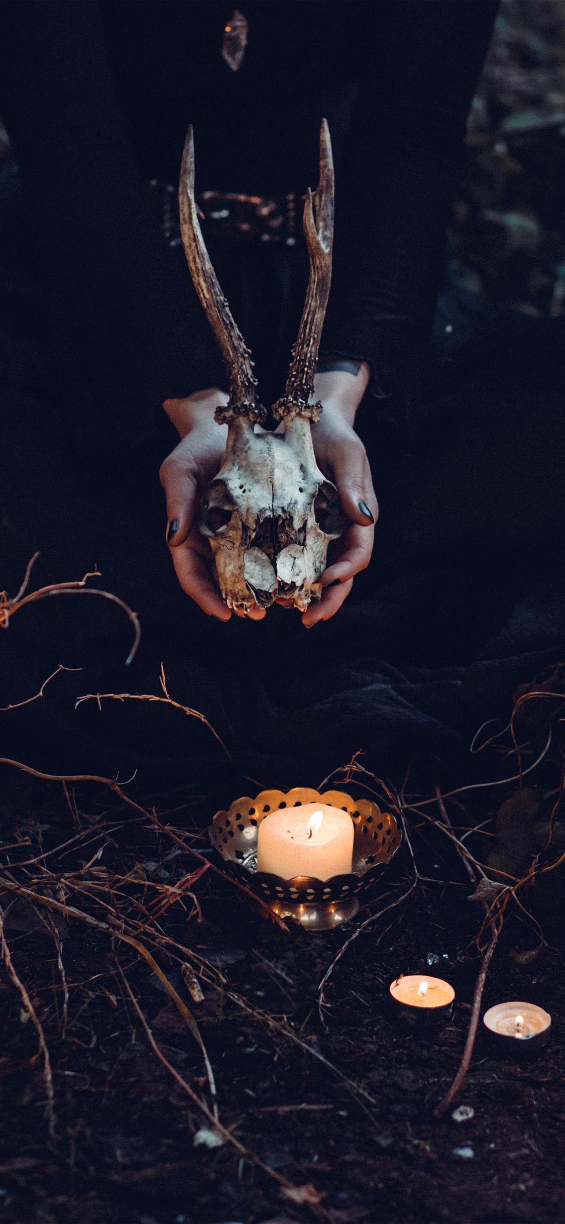 Iphonexpapers Com Iphone X Wallpaper Nw17 Halloween Pumpkin Skull Dark Nature