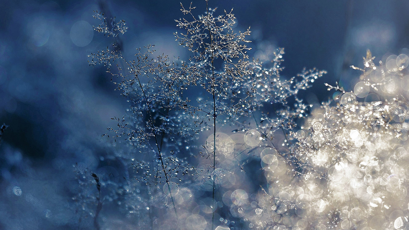 wallpaper-desktop-laptop-mac-macbook-nw53-snow-bokeh-light-beautiful-nature-blue