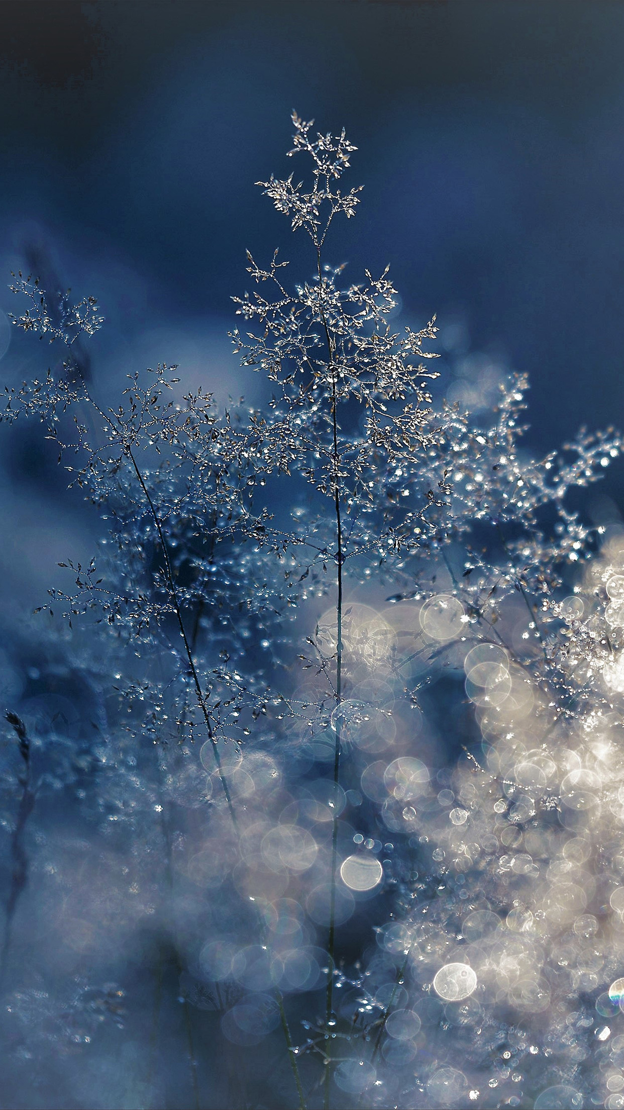 I Love Papers Nw53 Snow Bokeh Light Beautiful Nature Blue