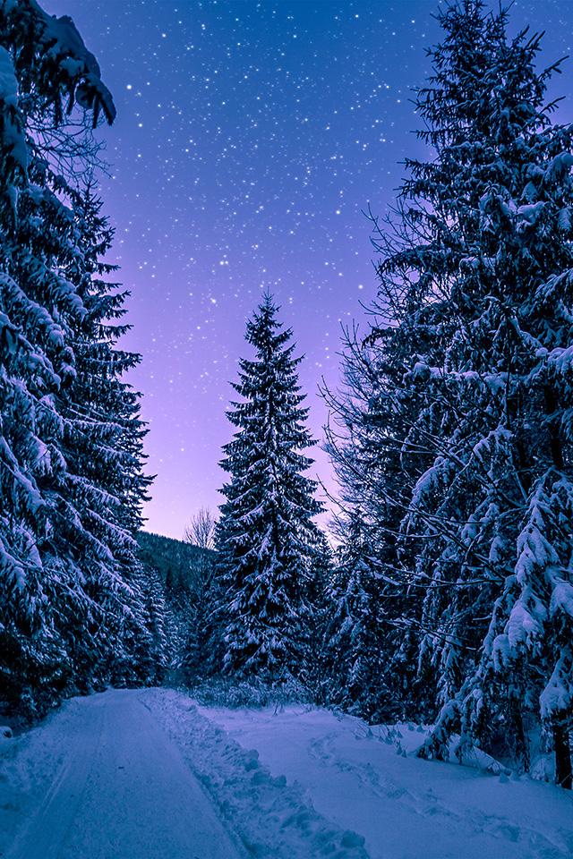 Freeios7 Com Iphone Wallpaper Nx97 Snow Winter Wood Tree Road