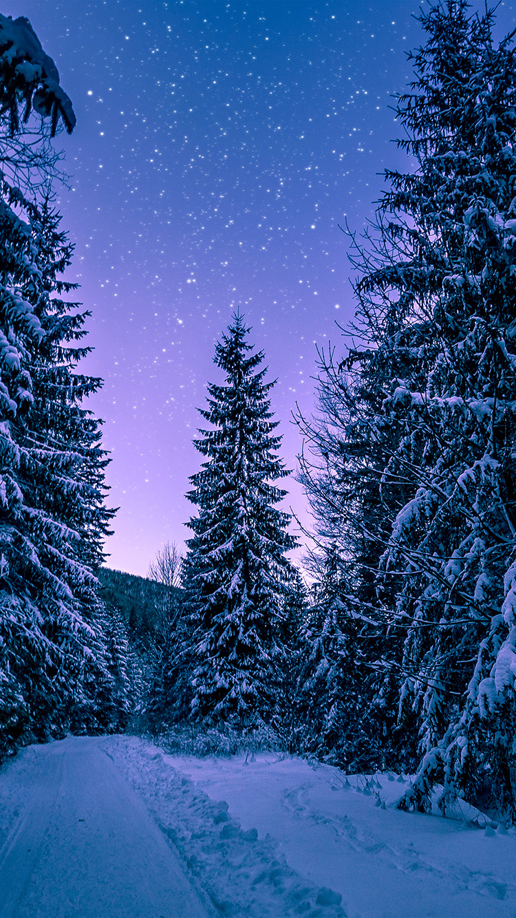 iPhone7papers.com-Apple-iPhone7-iphone7plus-wallpaper-nx97-snow-winter-wood-tree-road-night-nature
