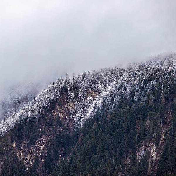 Cold mountain essay