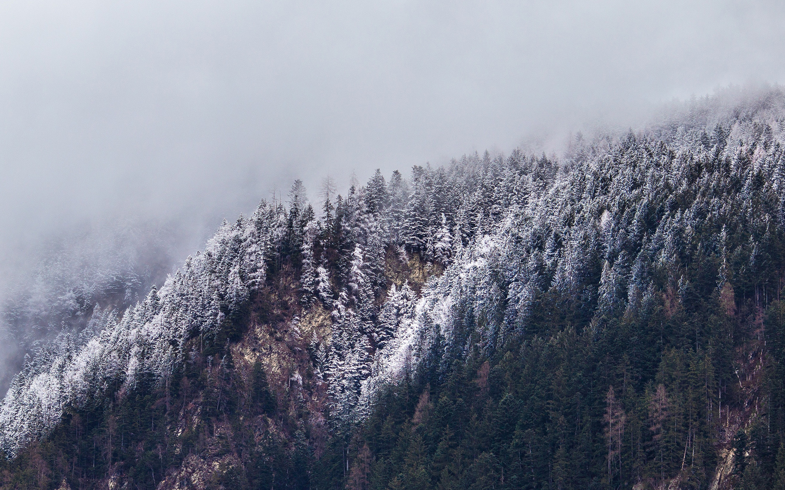 Cold Mountain Critical Essays