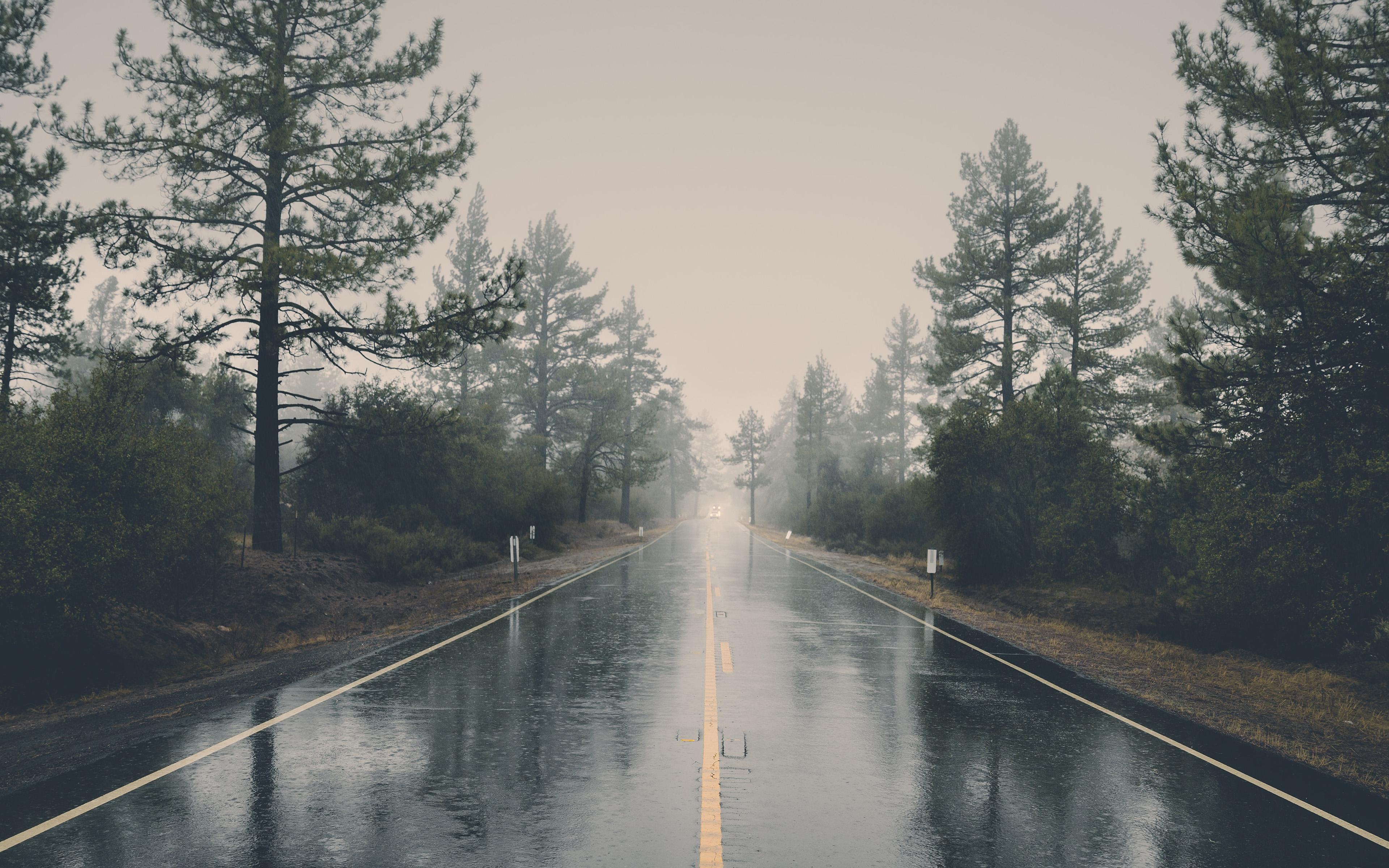 ny87-rain-road-street-city-nature-wallpaper